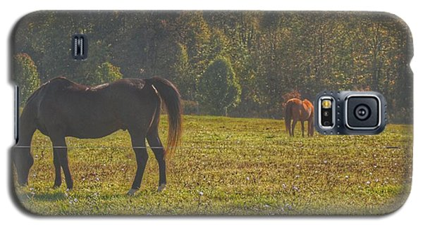 1012 - Fargo Road Horses I Galaxy S5 Case