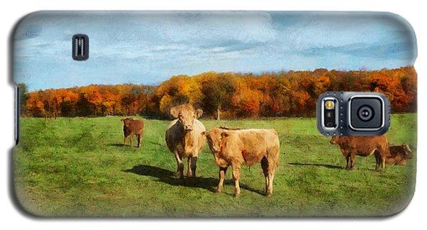 Farm Field And Brown Cows Galaxy S5 Case