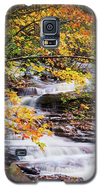 Galaxy S5 Case featuring the photograph Farmed With Golden Colors by Parker Cunningham