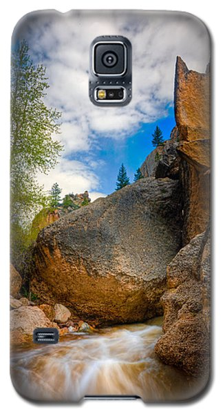Fast-flowing Crazy Woman Galaxy S5 Case