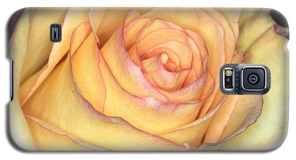 Favorite Yellow Galaxy S5 Case