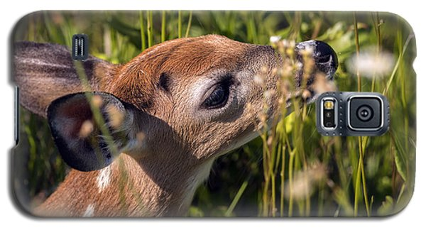 Fawn Smelling The Wildflowers Galaxy S5 Case