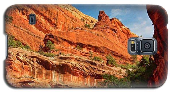 Fay Canyon Sandstone, Sedona, Arizona Galaxy S5 Case