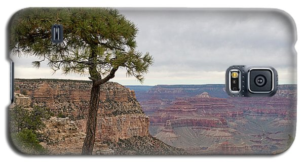 Fearless Tree Galaxy S5 Case