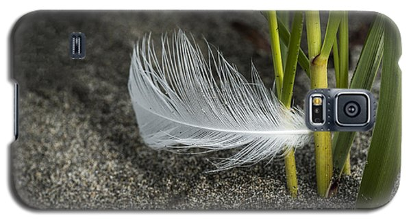 Feather And Beach Grass Galaxy S5 Case