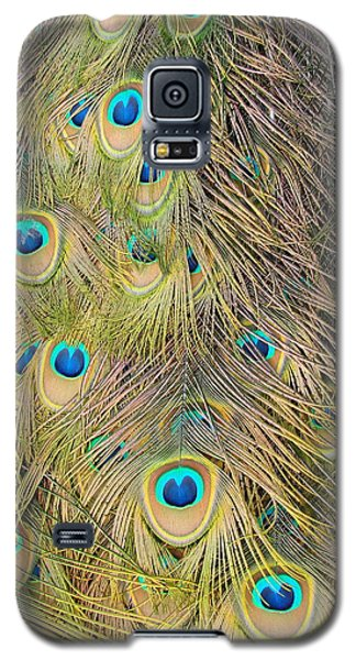 Galaxy S5 Case featuring the photograph Feather Finesse by Margaret Bobb