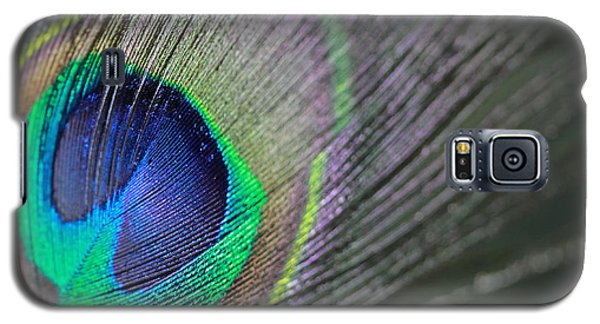 Feather In Green Galaxy S5 Case