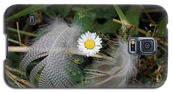 Galaxy S5 Case featuring the photograph Feathers On The Lawn #1 by Ben Upham III