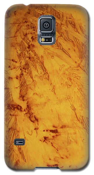 Galaxy S5 Case featuring the photograph Feathers On The Wind by Cynthia Powell