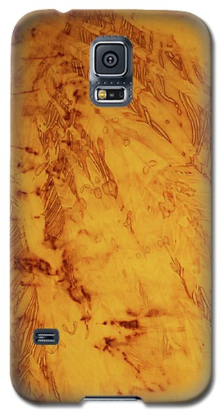 Feathers On The Wind Galaxy S5 Case by Cynthia Powell