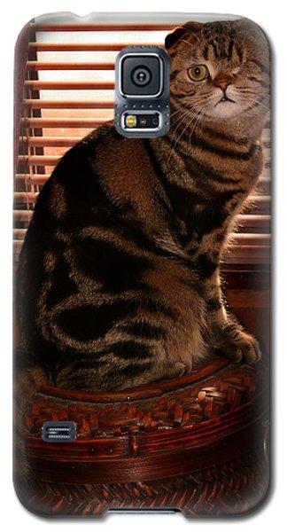 February 2007 Galaxy S5 Case