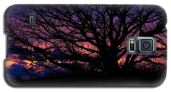 February Sunset Galaxy S5 Case