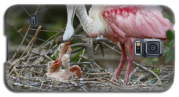 Feeding The Babies Galaxy S5 Case