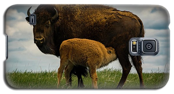 Galaxy S5 Case featuring the photograph Feeding Time II by Gary Lengyel