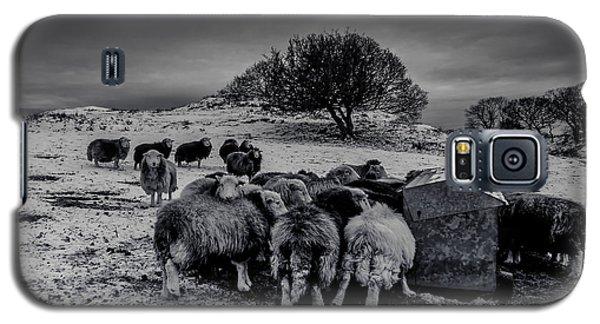 Feeding Time Galaxy S5 Case