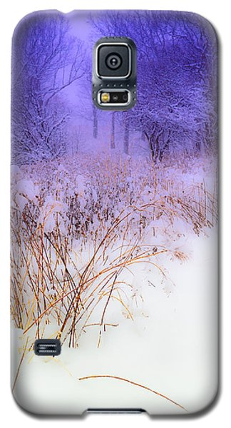 Feel Of Cold Land Galaxy S5 Case