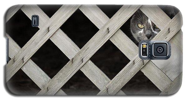 Feline Fence Galaxy S5 Case