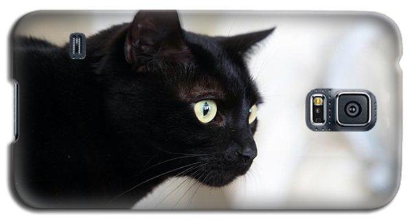 Feline On The Prowl Galaxy S5 Case