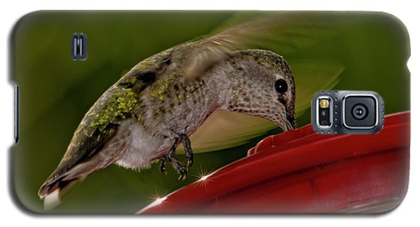 Galaxy S5 Case featuring the photograph Female Anna's Hummingbird H40 by Mark Myhaver