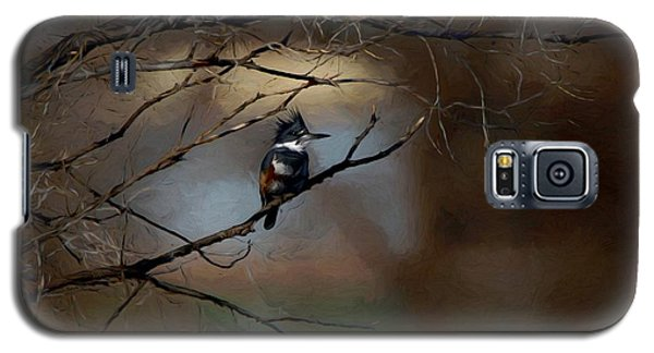 Female Belted Kingfisher 3 Galaxy S5 Case by Ernie Echols