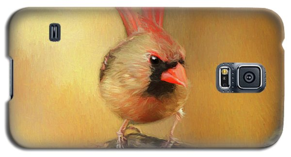 Galaxy S5 Case featuring the photograph Female Cardinal Excited For Spring by Darren Fisher