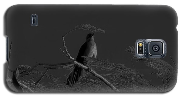 Female Grackle Galaxy S5 Case