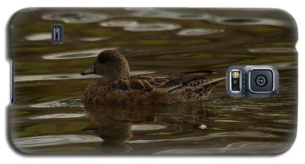 Galaxy S5 Case featuring the photograph Female Wigeon by Jeff Swan