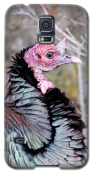 Female Wild Turkey Galaxy S5 Case