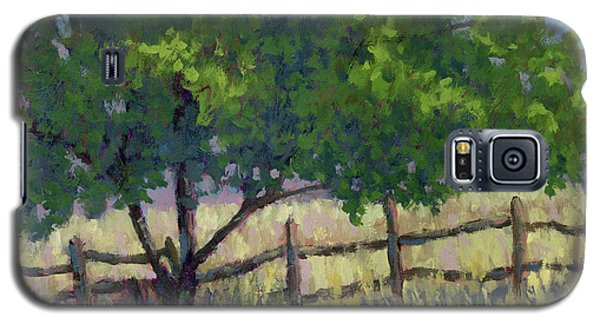 Fence Line Tree Galaxy S5 Case