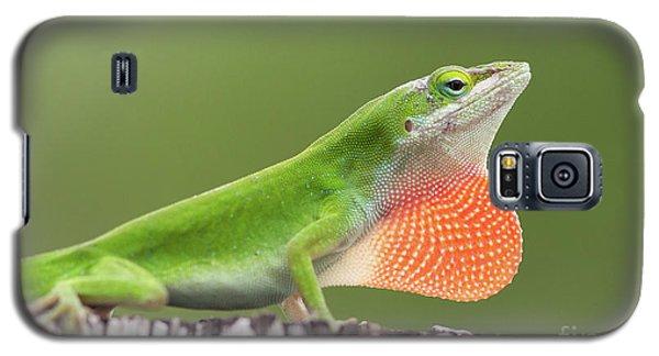 Fence Sitter Galaxy S5 Case