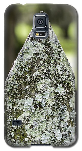 Fence With Moss Galaxy S5 Case