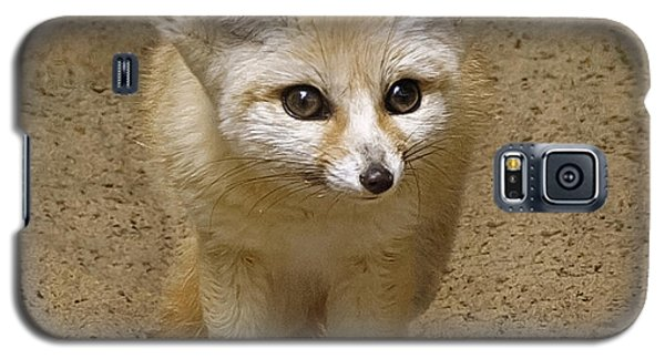 Fennec Fox Galaxy S5 Case