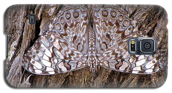 Galaxy S5 Case featuring the photograph Ferentina Calico Butterfly by Sean Griffin