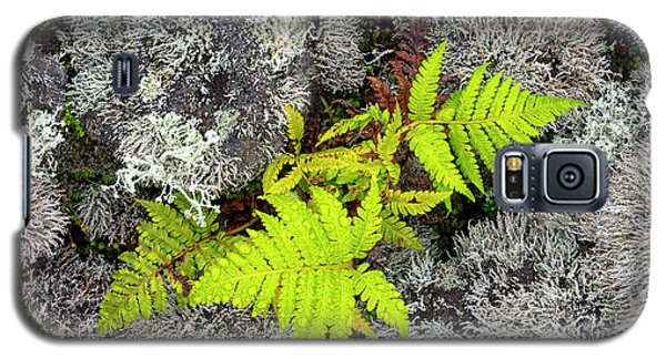 Fern And Lichen Galaxy S5 Case