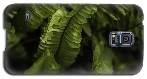 Fern Galaxy S5 Case