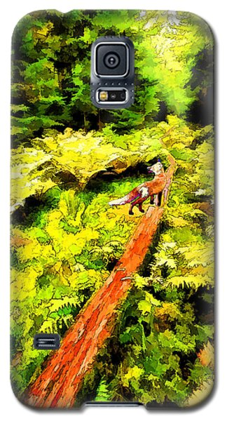 Galaxy S5 Case featuring the digital art Fern Forest Path In Autumn by ABeautifulSky Photography