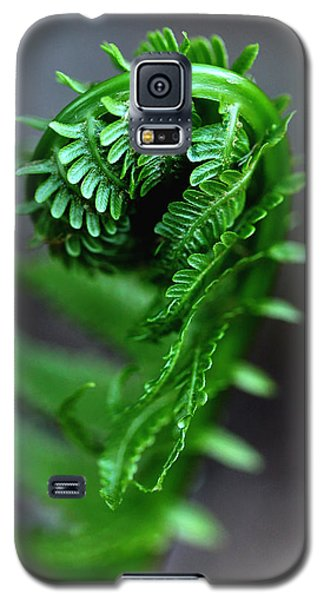 Fern Frond Galaxy S5 Case