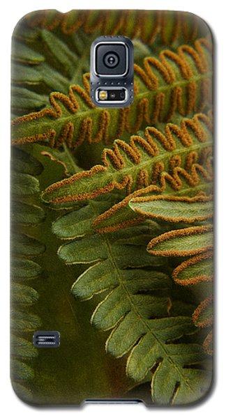 Fern In My Garden Galaxy S5 Case