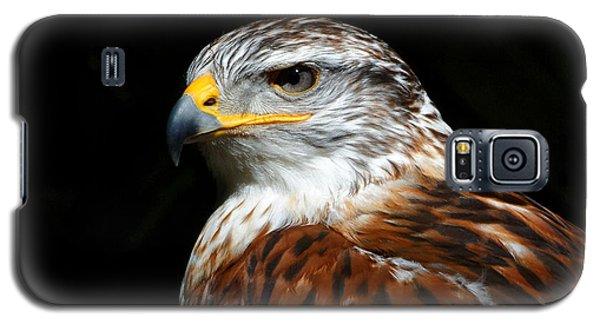 Ferruginous Hawk Portrait Galaxy S5 Case