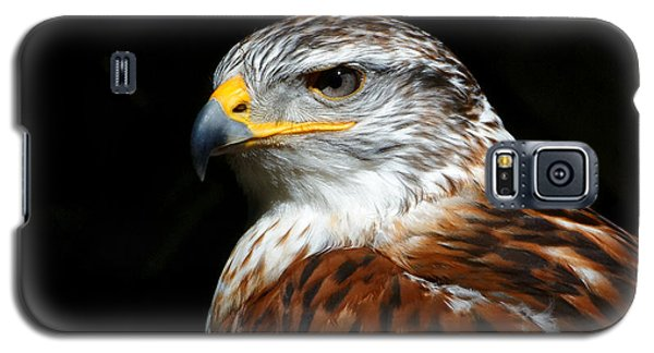Ferruginous Hawk Portrait Galaxy S5 Case