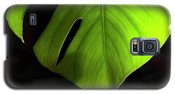 Fhgreen Galaxy S5 Case