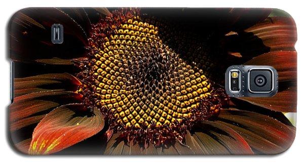 Fibonacci Hues Galaxy S5 Case