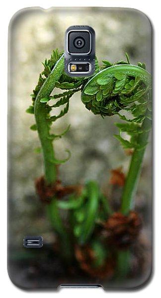 Fiddleheads Galaxy S5 Case