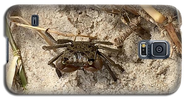 Fiddler Crab Galaxy S5 Case by Janice Spivey