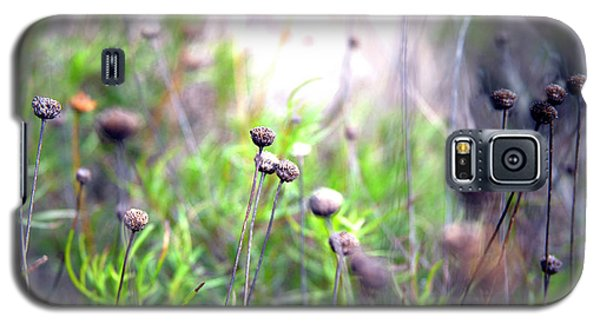 Field Flowers Galaxy S5 Case