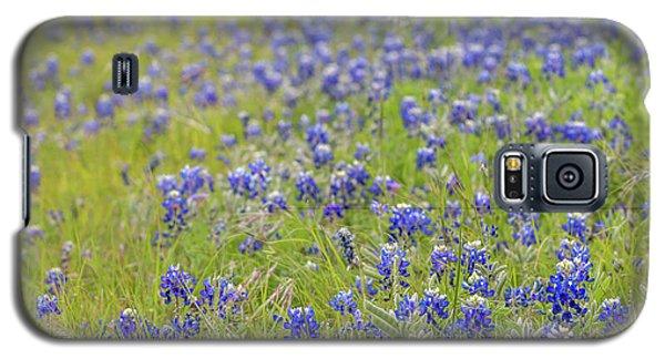 Field Of Blue Bonnet Flowers Galaxy S5 Case