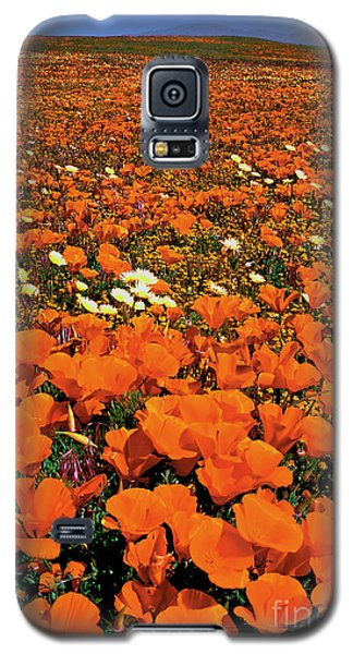 Galaxy S5 Case featuring the photograph Field Of California Poppies Lancaster California by Dave Welling