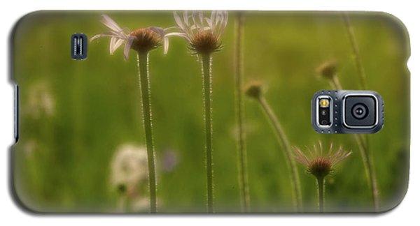 Field Of Flowers 2 Galaxy S5 Case