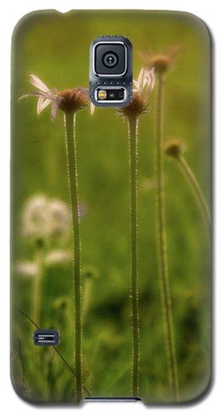 Field Of Flowers 3 Galaxy S5 Case