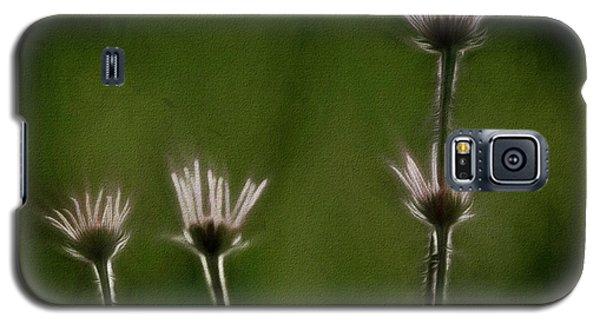 Field Of Flowers 4 Galaxy S5 Case